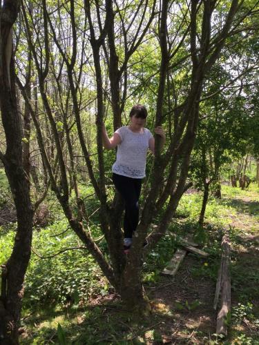 Climbed-a-tree-at-school